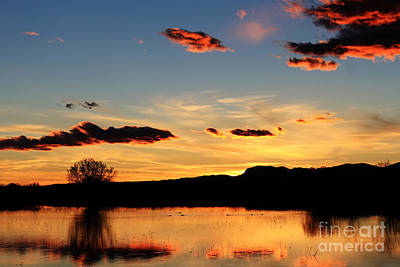 Marsh Sunset Art Print by Val Armstrong
