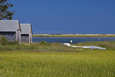 Photograph - Marsh View by Michael Friedman