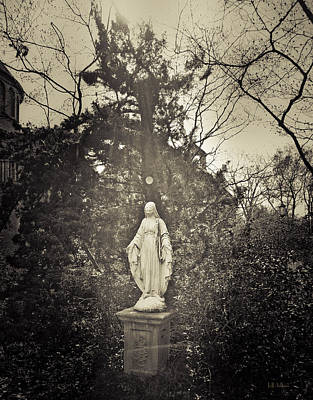Photograph - Mary by Jeff Adkins