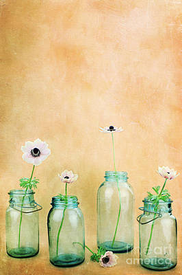 Mason Jars Art Print by Stephanie Frey