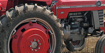 Photograph - Massey Ferguson 165 by Ian  MacDonald
