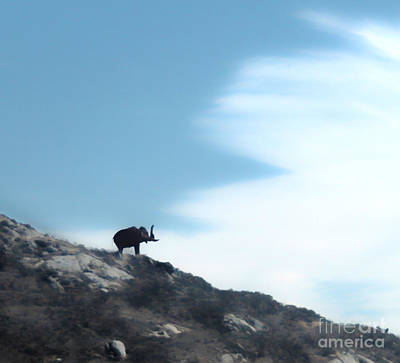 Painting - Mastodon On A Hill - 01 by Gregory Dyer