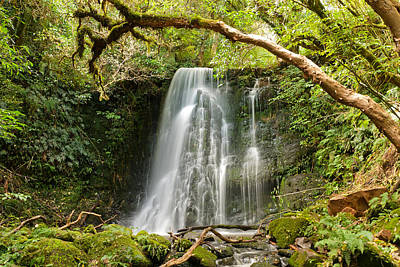 Photograph - Matai Falls by Graeme Knox