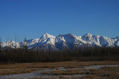 Photograph - Matanuska Peak  by Doug Lloyd