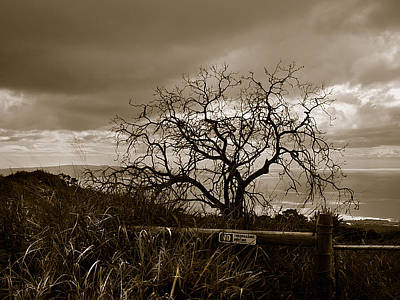 Photograph - Maui Storm by Marilyn Marchant