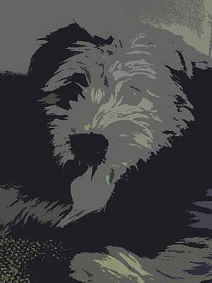 Terrier Digital Art - Max 'n Million by Vijay Sharon Govender