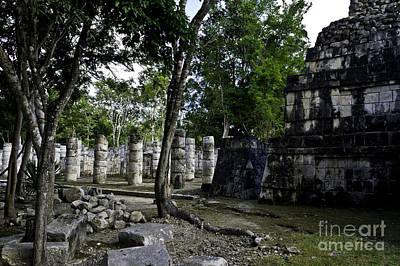 Photograph - Mayan Colonnade Two by Ken Frischkorn