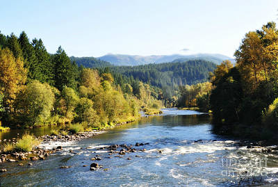 Art Print featuring the photograph Mckenzie River  by Mindy Bench