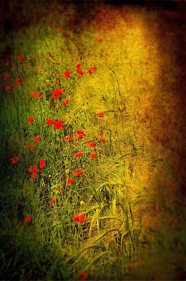 Poppies Field Digital Art - Meadow by Svetlana Sewell
