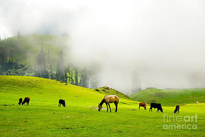 Meadows Of Heaven Art Print by Syed Aqueel