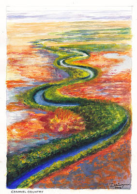 Meandering River In Northern Australian Channel Country Original by Dai Wynn