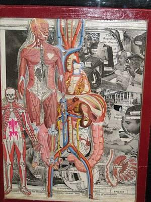 Medical Print by Francisco Magos