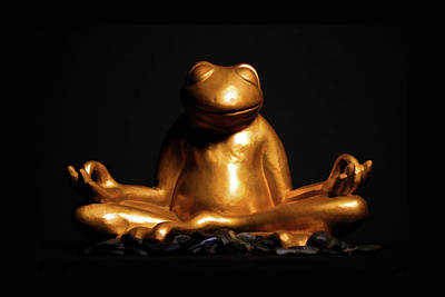 Photograph - Meditations Of A Frog by Brian Davis