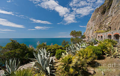 Photograph - Mediterranean Garden by Mike Reid