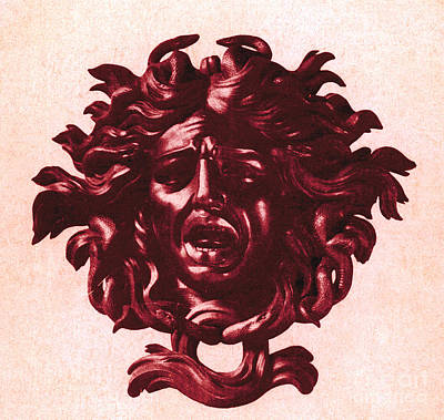Medusa Head Print by Photo Researchers