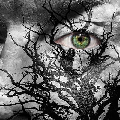 Medusa Tree Art Print by Semmick Photo