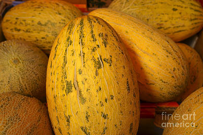 Photograph - Mellow Yellow Melons by John  Mitchell