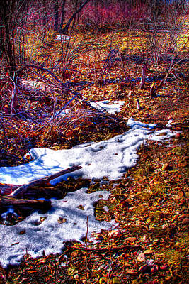 Photograph - Melting Snow In South Platte Park II by David Patterson