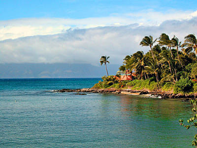Photograph - Memories Of Maui by Lynn Bauer