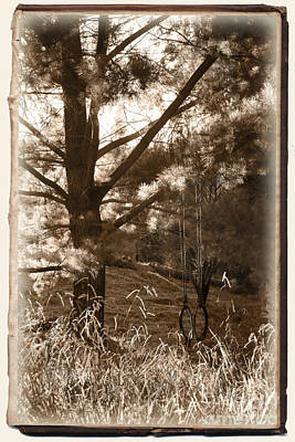 Photograph - Memories Of Summer by Ellen Cotton