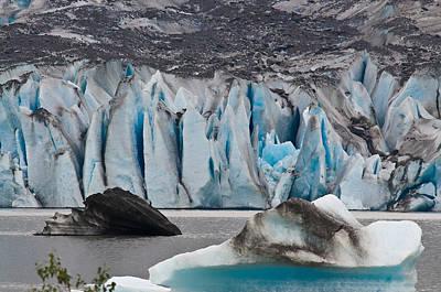 Mendenhall Glacier Juneau Alaska 1698 Art Print