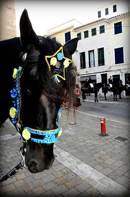 Photograph - Menorca Horse 1 by Pedro Cardona