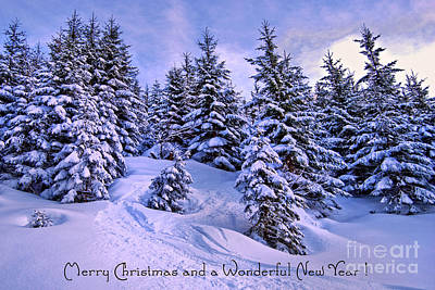 Merry Christmas And A Wonderful New Year Art Print by Sabine Jacobs