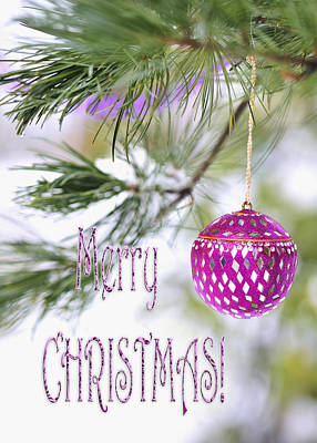 Photograph - Merry Christmas Card With Pink Ornament On Snowy Pine Tree  by Marianne Campolongo