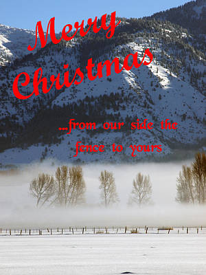 Photograph - Merry Christmas From Our Side The Fence To Yours by DeeLon Merritt
