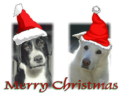 On Trend Breakfast - Merry Christmas Puppies by Randy Harris