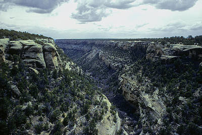 Photograph - Mesa Verde Canyon by John Brink