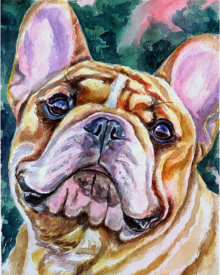 Watercolor Pet Portraits Painting - Mesmerizing Eyes by Lyn Cook