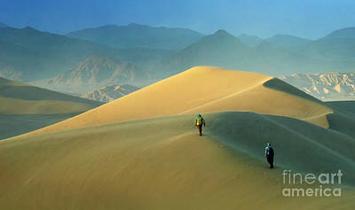 Photograph - Mesquite Dunes 9 by Bob Christopher
