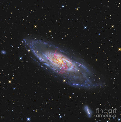 Messier 106, A Spiral Galaxy With An Art Print by R Jay GaBany