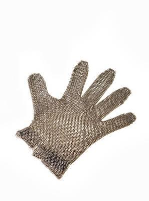Metal Mesh Glove Print by Cristina Pedrazzini