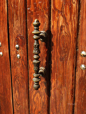 Photograph - Mexican Door Decor 11 by Xueling Zou