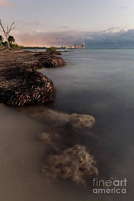 Biscayne Bay Photograph - Miami Beach From Key Biscayne by Matt Tilghman