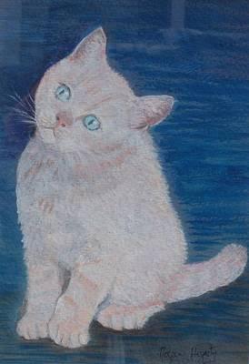 Miaow Art Print by Noreen Hegarty