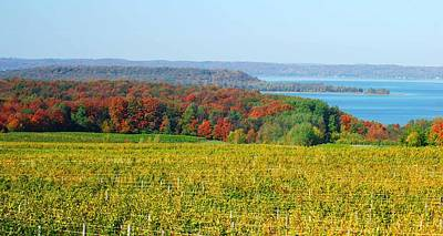 Michigan Winery Views Art Print by Optical Playground By MP Ray