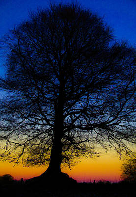 Photograph - Midnight Calm by Rob Hemphill