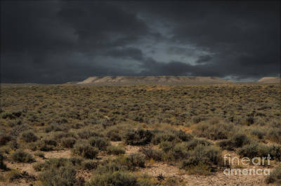 Photograph - Midnight On The Pairie In Wyoming by Donna Greene