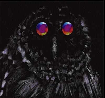 Luminous Drawing - Midnight Owl by Joan Pollak