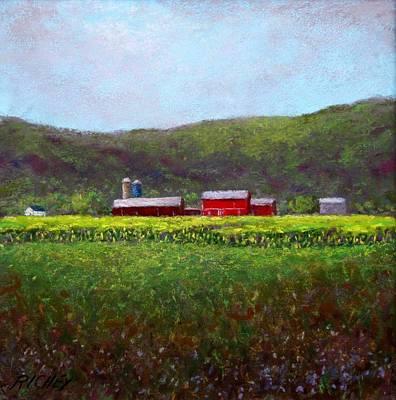 Midsummer In Pennsylvania Art Print by Bob Richey