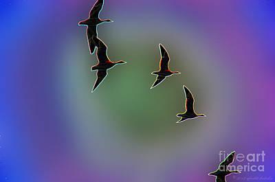 Photograph - Migration by Afroditi Katsikis