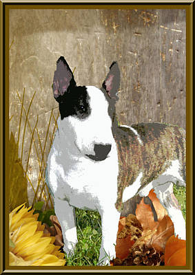 Minature Bull Terrier Art Print by One Rude Dawg Orcutt