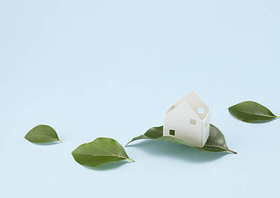 Y120831 Photograph - Miniature House And Leaves (ecology Image) by sozaijiten/Datacraft