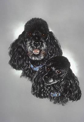 Miniature Poodles Art Print by Patricia Ivy