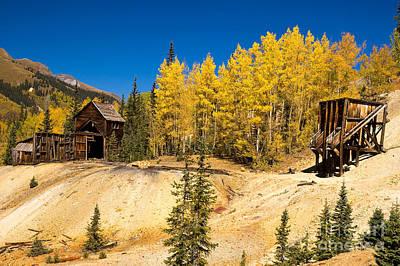 Photograph - Mining Aspens by Steve Stuller