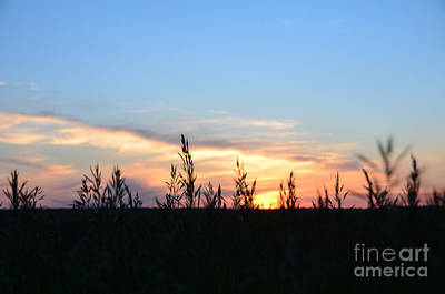 Photograph - Minnesota Sunset 12 by Cassie Marie Photography