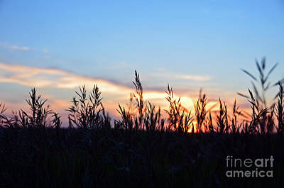 Photograph - Minnesota Sunset 13 by Cassie Marie Photography